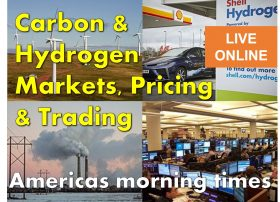 IMAGE - 2021.10.19 - CO2-H2 Course - Americas Mornings Times Session